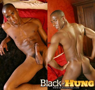 Black n Hung tube